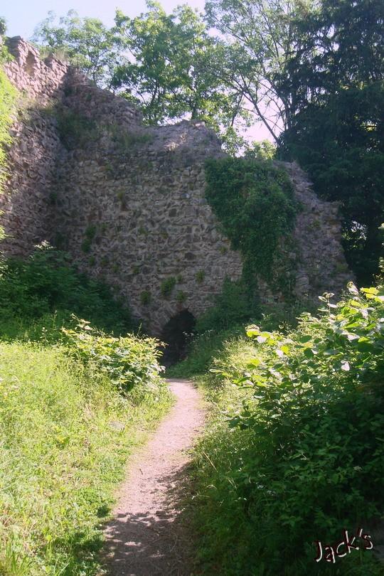 Les trois châteaux de Ribeauvillé  Dsc05712
