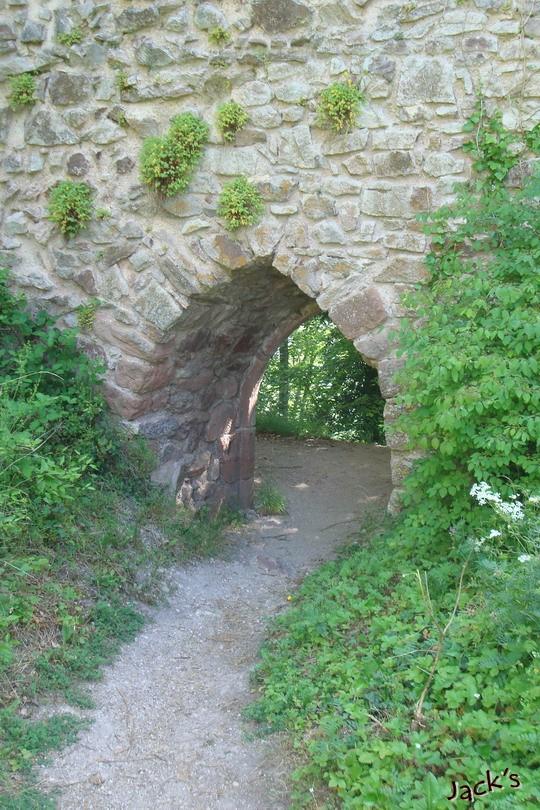 Les trois châteaux de Ribeauvillé  Dsc05713