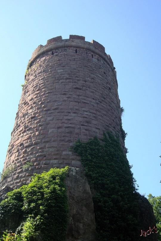 Les trois châteaux de Ribeauvillé  Dsc05714