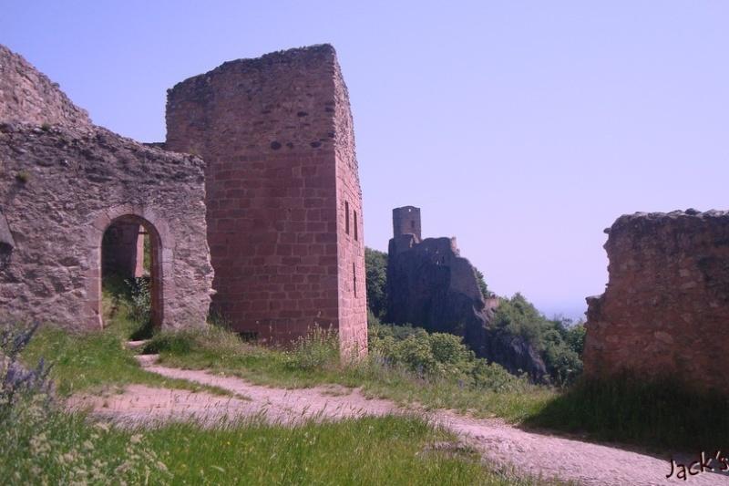 Les trois châteaux de Ribeauvillé  Dsc05715