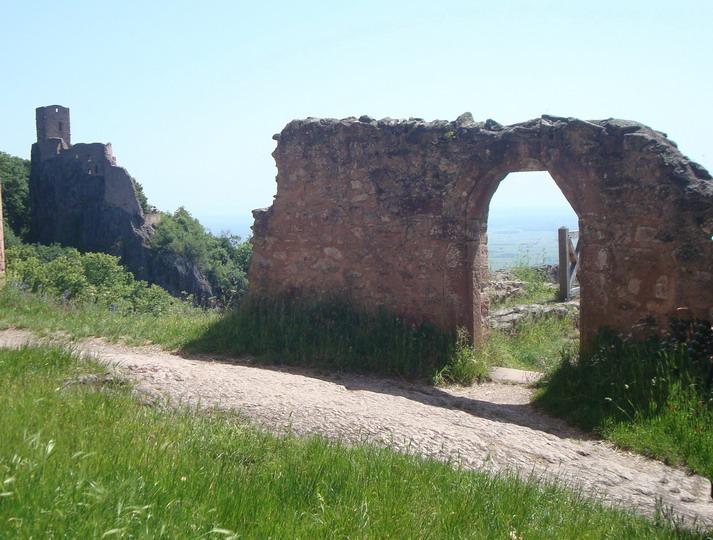 Les trois châteaux de Ribeauvillé  Dsc05716