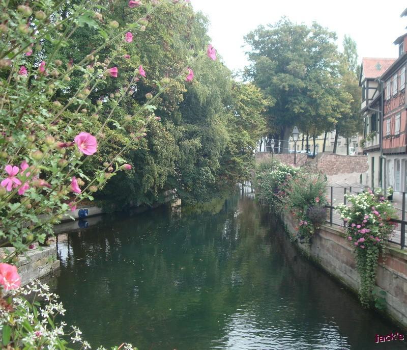 La Petite Venise en  Alsace Dsc06015