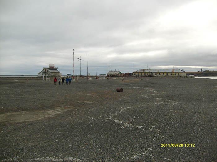 Остров Врангеля 25-28 августа 2011 года. 1212