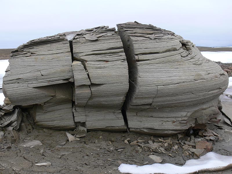 Арктика. Расположение метеостанций. 1510