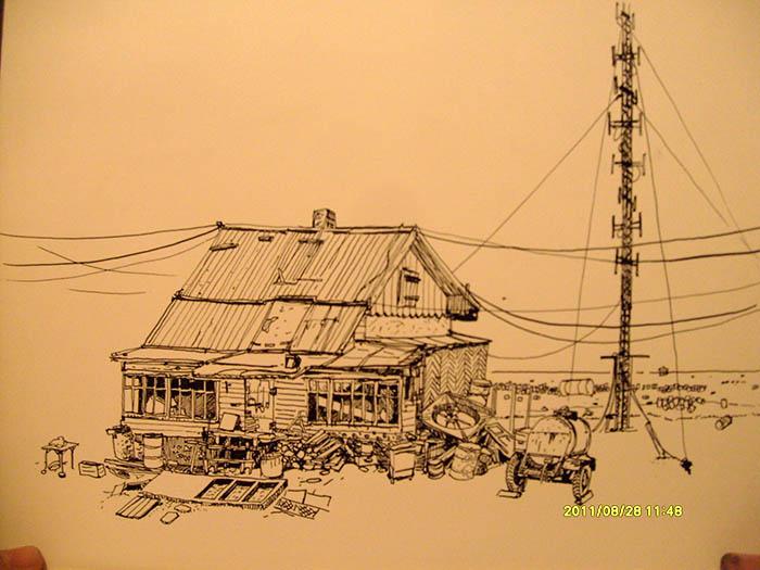 Остров Врангеля 25-28 августа 2011 года. 1512