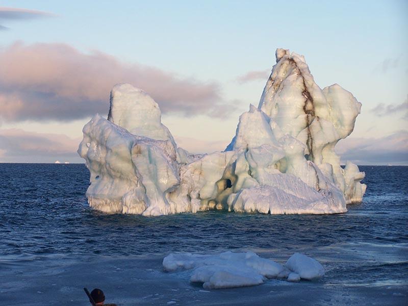 Арктика. Расположение метеостанций. 311