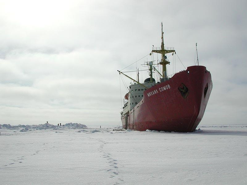 Арктика. Расположение метеостанций. 510