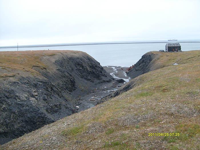 Остров Врангеля 25-28 августа 2011 года. 913