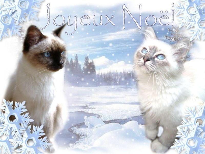 """Bonjour / Bonsoir"" !!! - Page 38 Joyeux10"