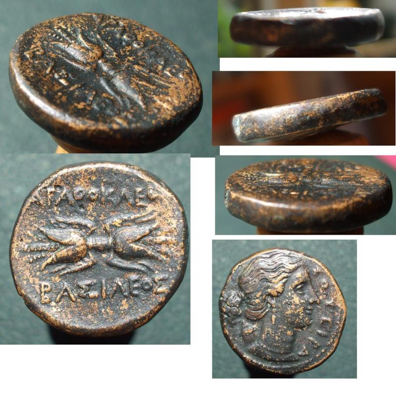 Authenticité douteuse d'un bronze d'Agathoklès Sicile Agatho11