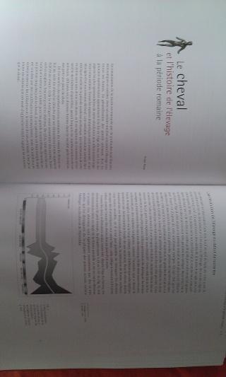 Un petit projet à partager : EQVVS  - Page 3 Wp_20113
