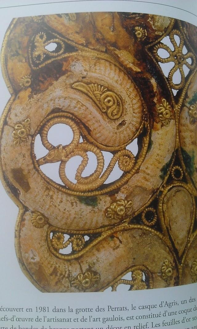 ETUDE: serpent cornu Wp_20119