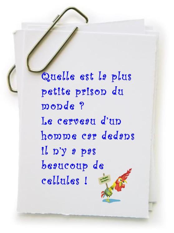 Les Petites Blagounettes bien Gentilles - Page 4 Ymage010