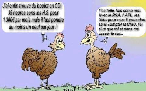 Humour en images !!! Zzz11