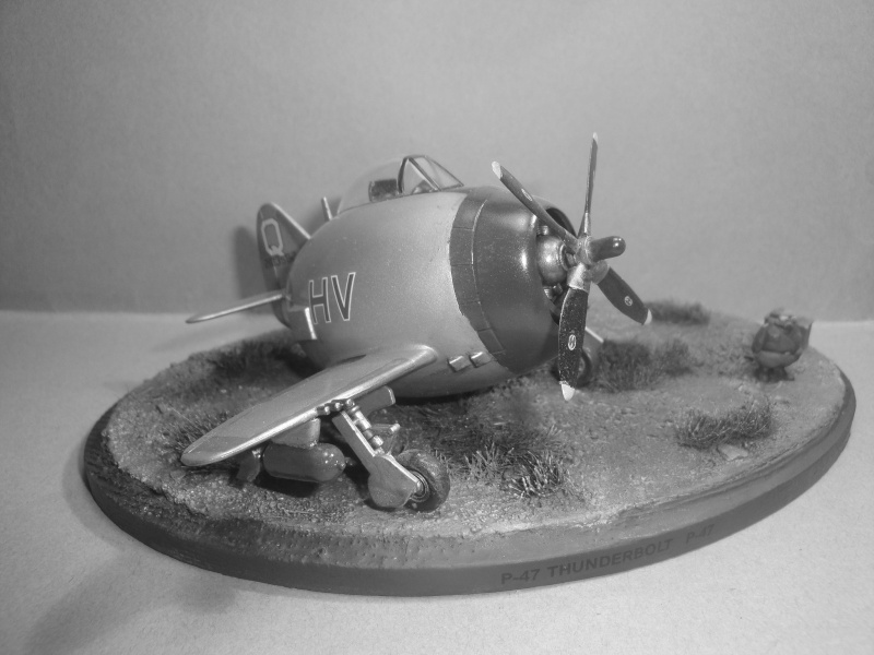 [Hasegawa] Eggplane P-47 Thunderbolt   Dsc08314