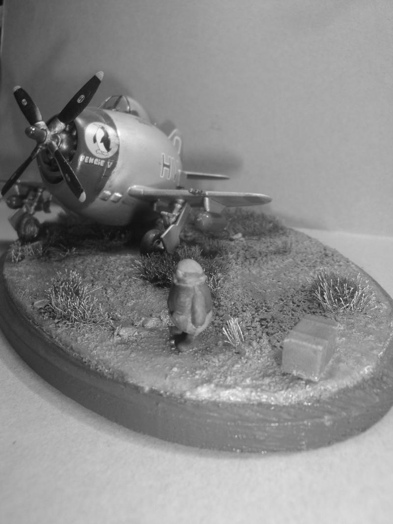 [Hasegawa] Eggplane P-47 Thunderbolt   Dsc08316