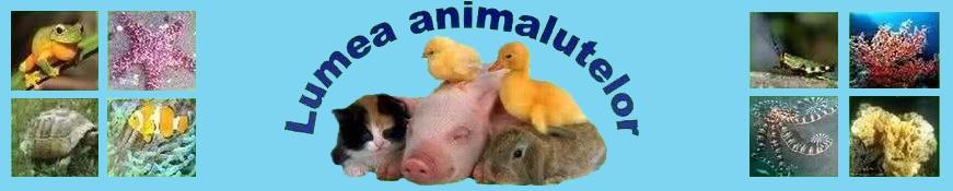 Lumea animalutelor