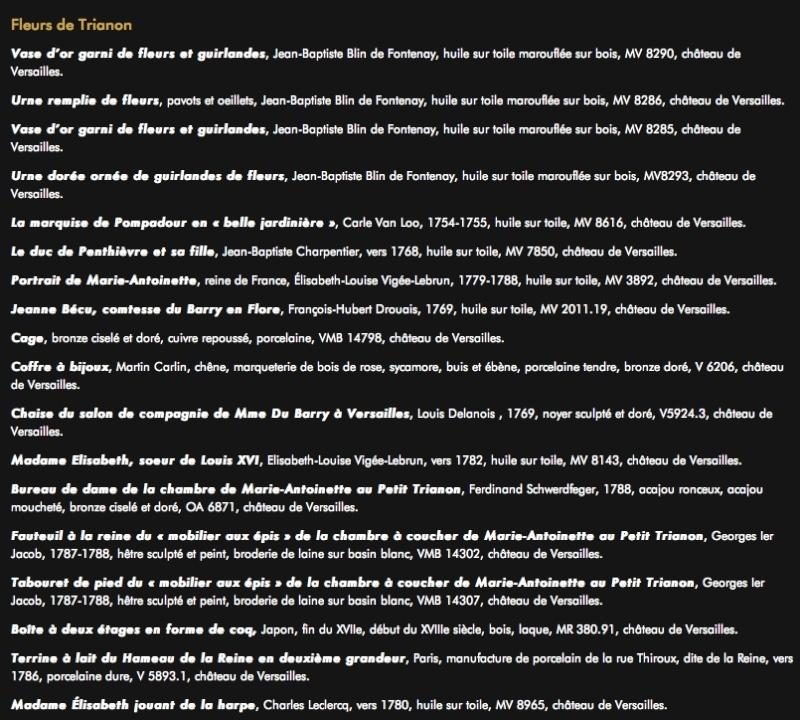 Arras : Cent chefs-d'Oeuvre de Versailles - Page 5 Arras610