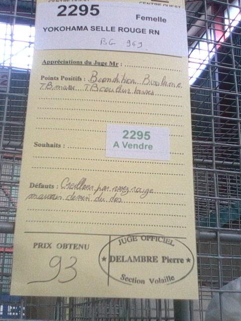 Exposition de Limoges Img01414