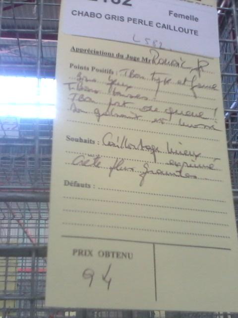 Exposition de Limoges Img01613