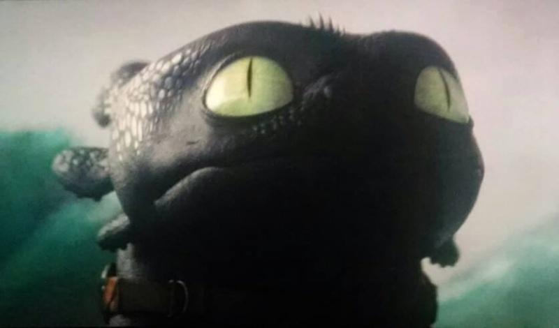 Dragons 2 [spoilers présents] DreamWorks (2014) 10454310