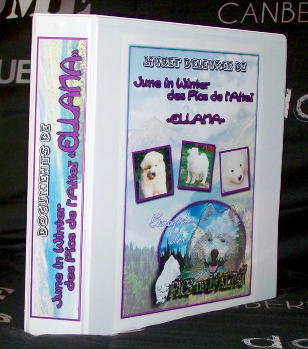"""Les premiers chiots """"Pics de l'Altaï"""" sont enfin là <3 - Page 2 100_4710"""
