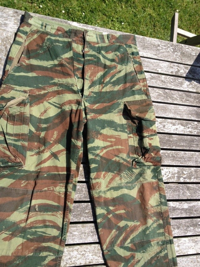 Un peu de camouflage Léopard - Page 5 Photo_17