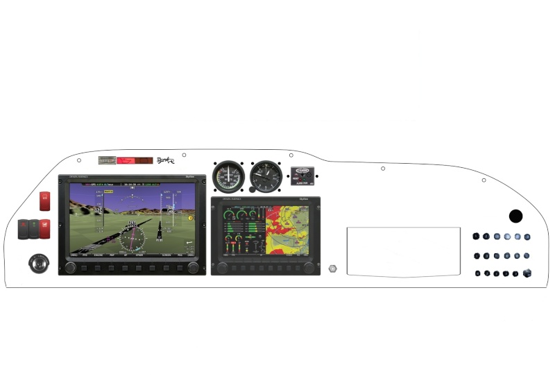 Dynon Skyview sur nos MCR Newpro11