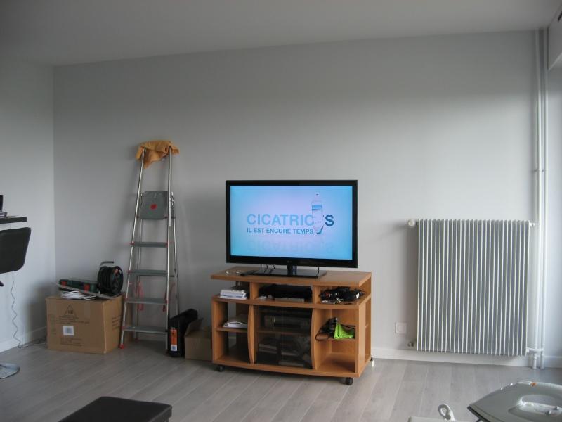 aide pour remeubler mon salon Img_2011