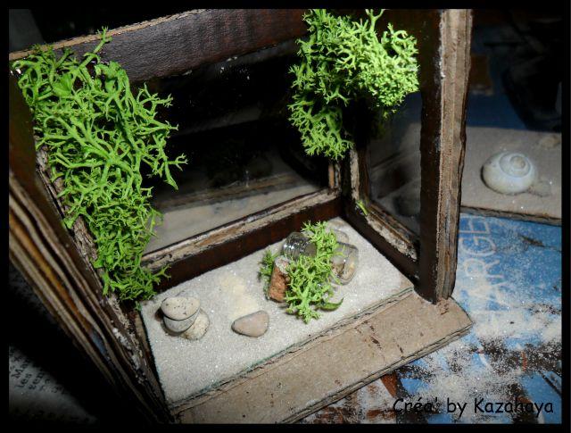 [Tuto] Aquarium by Kaza' Sam_7122