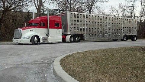 peterbilt 386 de Kyle Andrew ( USA Iowa)  86259810