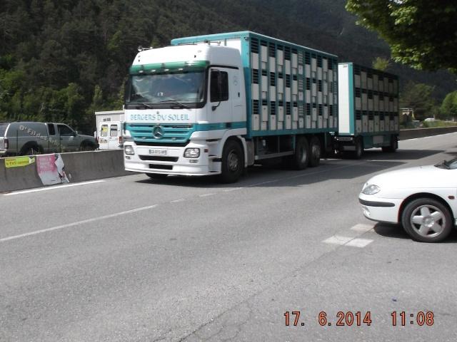 Des photos de camions bétaillères à moutons et d'autres photos de camions aussi conduit par Henry Elie . - Page 3 01218