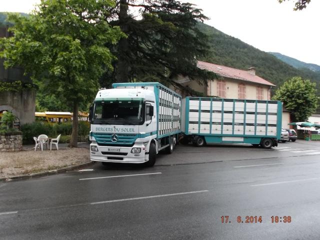 Des photos de camions bétaillères à moutons et d'autres photos de camions aussi conduit par Henry Elie . - Page 3 01416