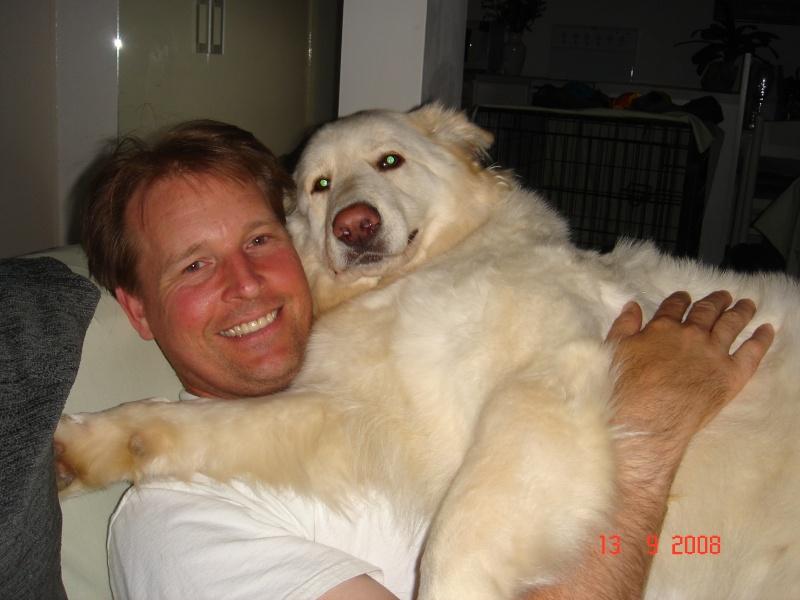 LCGSD Calendar - Feb 2009 Theme - Man's best friend Dsc04211
