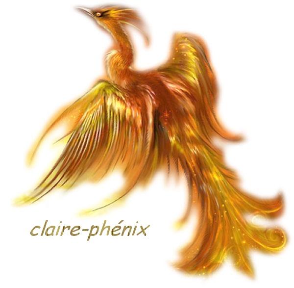charte puis signature 2008 à 2012 - Page 2 Phenix10