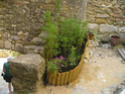 Saint-Montan en Ardèche P7120122
