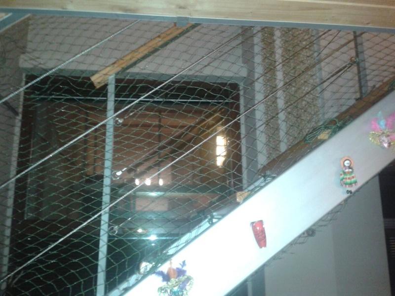 Resumen de ideas para mosquiteras y redes ventanas y balcón para gatos. - Página 2 Akira_15