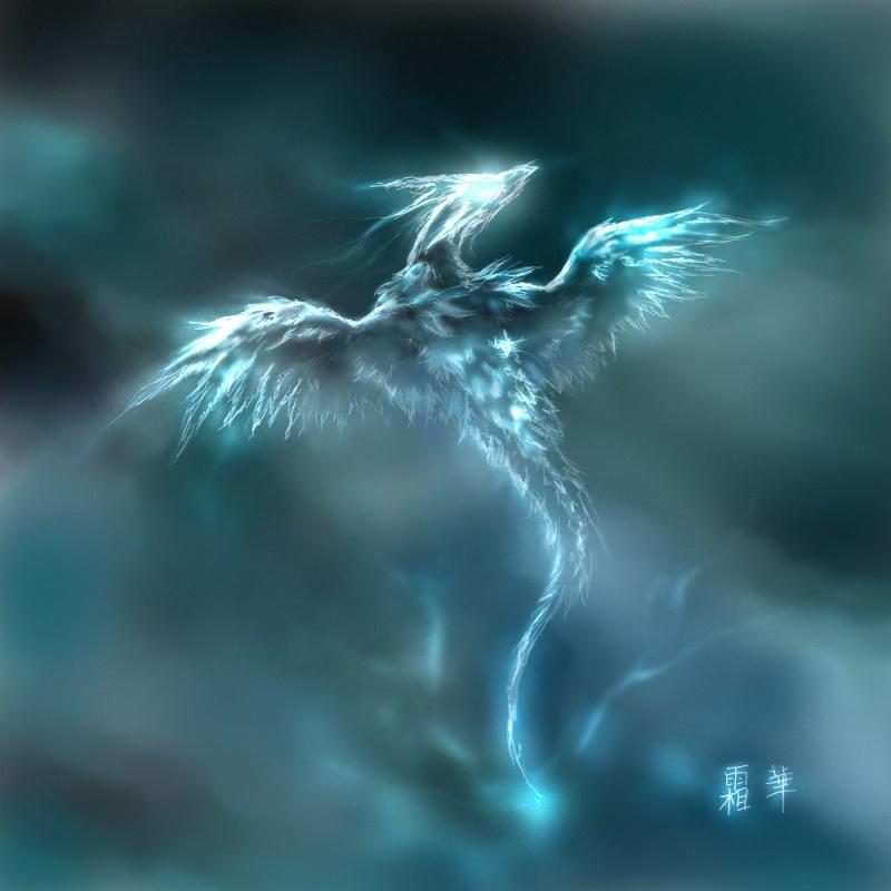 Créatures fantastiques au grès de la toile 2013-2014 Dragon13