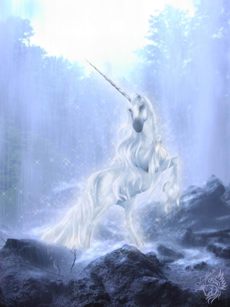 Créatures fantastiques au grès de la toile 2013-2014 Licorn16