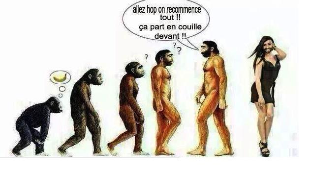 """Vous avez dit """"Evolution""""? Clicha14"""