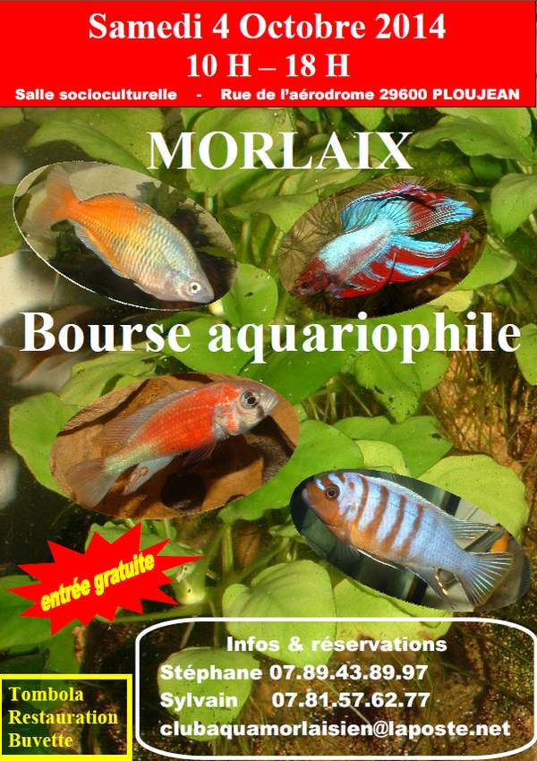 MORLAIX 2e BOURSE AQUARIOPHILE Affich11