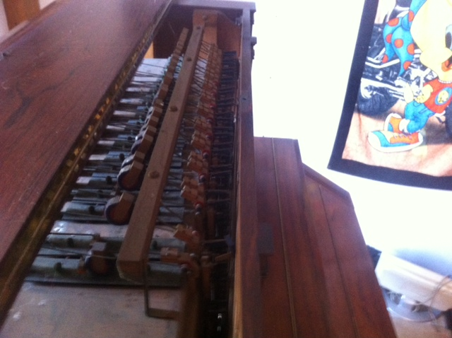 harmonium vor mustel Photo_17