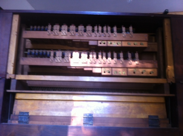 harmonium vor mustel Photo_20