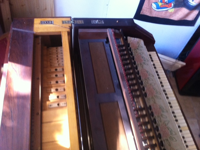 harmonium vor mustel Photo_21
