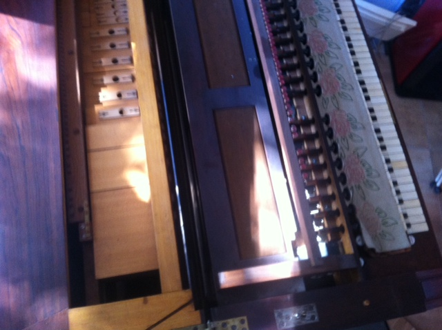 harmonium vor mustel Photo_22