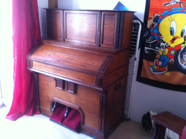harmonium vor mustel Photo_26