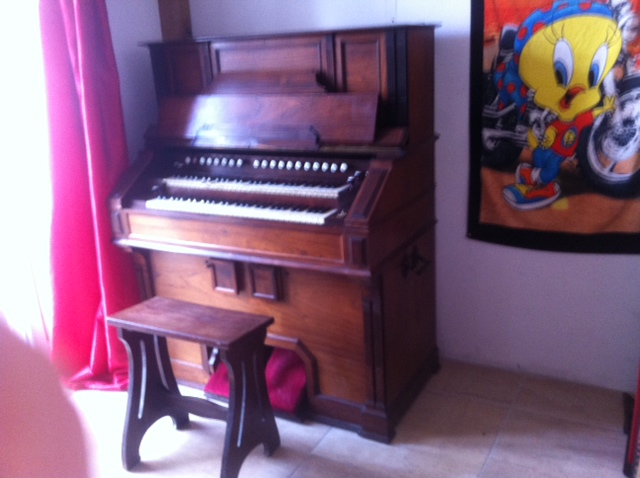 harmonium vor mustel Photo_28