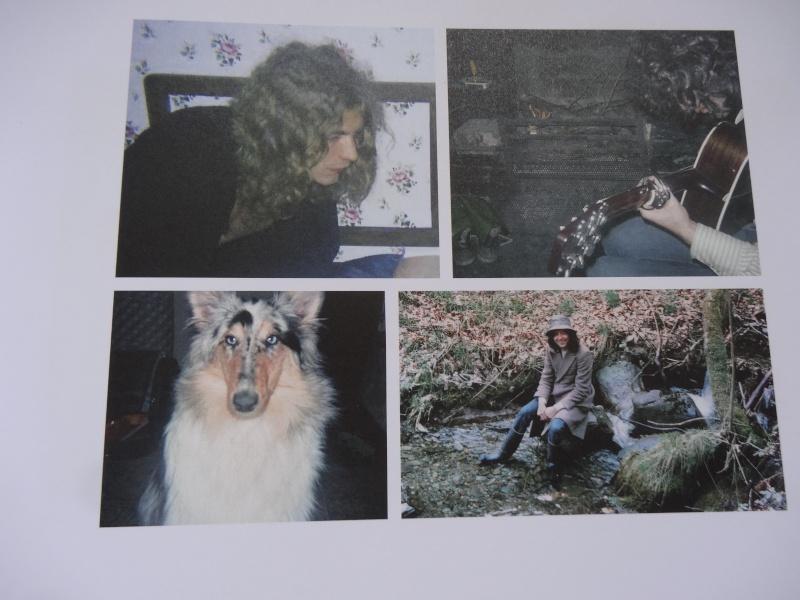 LES BELLES PHOTOS DU ZEP !!!!!!!!!!!! - Page 6 Dsc06524