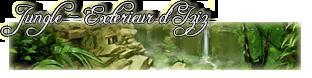Demande du staff pour le forum : bannières des planètes Jungle16