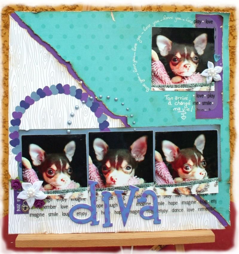 Les pages de Stella  Img_9810